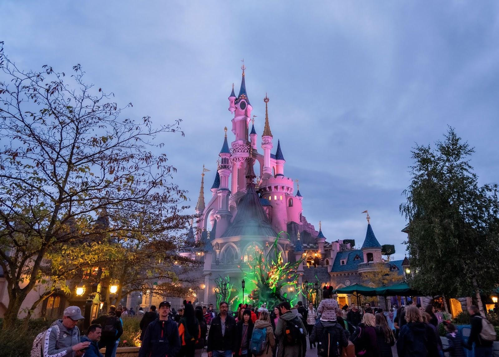 "Maleficent's ""vines"" behind the castle in Fantasyland, Disneyland Paris"